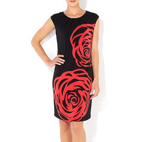 Wallis - Red rose printed dress