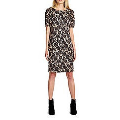 Wallis - Camel rose jacquard dress