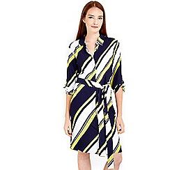 Wallis - Stripe lime navy printed dress