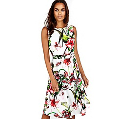 Wallis - Floral ivory printed dress