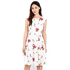 Wallis - Cream floral printed fit and flare dress