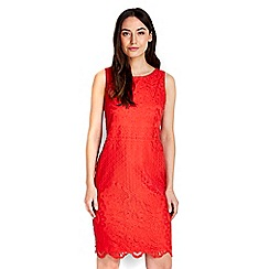 Wallis - Red lace shift dress