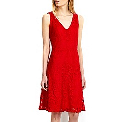 Wallis - Red v-neck lace fit and flare dress