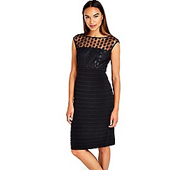 Wallis - Black mesh embroidered dress