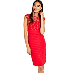 Wallis - Red mesh embroidered dress
