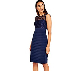Wallis - Navy mesh embroidered dress