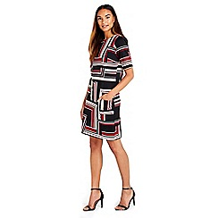 Wallis - Berry stripe printed dress