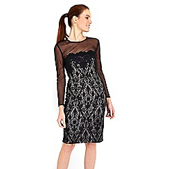Wallis - Black mesh sleeve lace dress