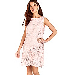 Wallis - Blush new crochet lace dress
