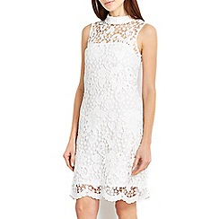 Wallis - Ivory high neck lace dress