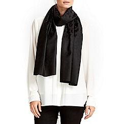 Wallis - Black animal jacquard scarf
