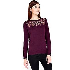 Wallis - Berry lace detail jumper