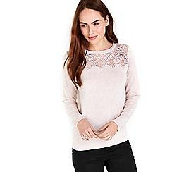 Wallis - Pink lace detail jumper