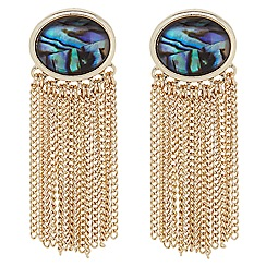 The Collection - Abalone inspired oval chain drop earring