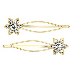 The Collection - Set of two crystal flower wide hair slides