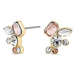 No. 1 Jenny Packham - Designer mixed stone stud earring