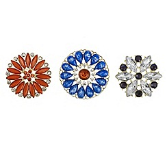 Mood - Pack of three floral stone brooches