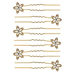 Red Herring - Crystal floral hair pin set