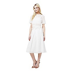 Miss Selfridge - White organza check skirt