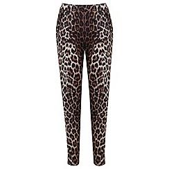 Miss Selfridge - Leopard jogger