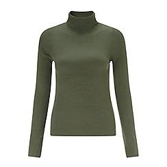 Miss Selfridge - Olive rib roll neck jumper