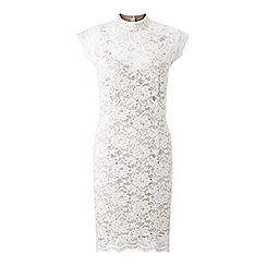 Miss Selfridge - High neck lace bodycon dress