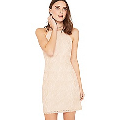 Miss Selfridge - Pink lace bodycon petite dress
