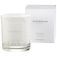 Sheridan - Cream 'Citrus lane' candle