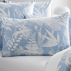Sheridan - Light blue 220 thread count 'Niland' pillow case pair
