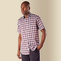 Racing Green - Beacon highlight check shirt