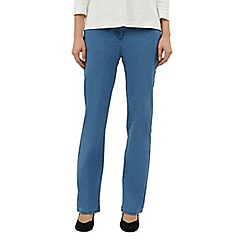 Dash - Light Wash Classic Jeans Petite