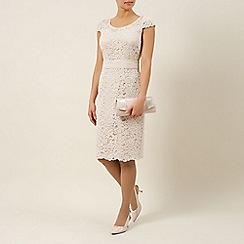 Jacques Vert - Elegant lace dress