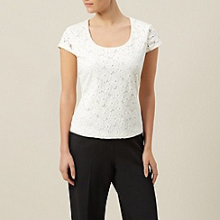 Precis Petite - Floral lace short sleeve top