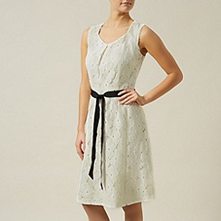 Precis Petite - Lace a-line belted dress