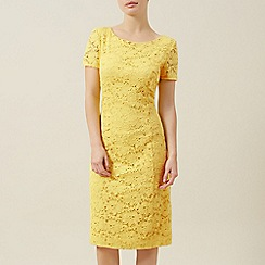 Precis Petite - Yellow lace dress