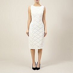 Precis Petite - Stone lace dress