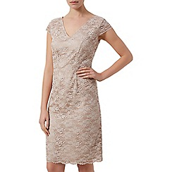 Kaliko - Daisy chain lace shift dress
