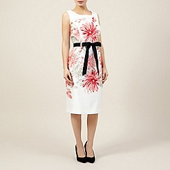 Precis Petite - Placement print belted shift