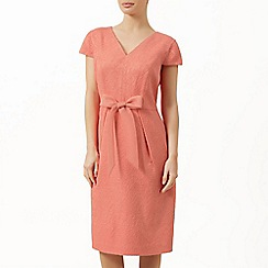 Precis Petite - Coral jacquard bow dress