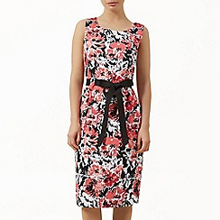 Precis Petite - Pique floral shift dress
