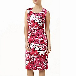 Precis Petite - Sleeveless floral shift dress