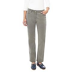 Dash - Classic Leg Petite Jean