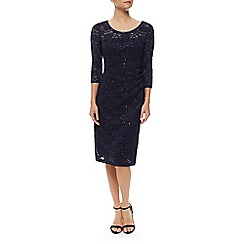 Precis Petite - Sheer Yoke  Lace Dress