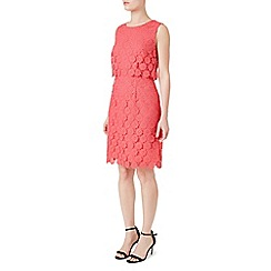Precis - Jeff Banks Lace Shift Dress