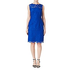 Precis Petite - Blue Lace Sleeveless Dress