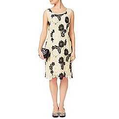 Jacques Vert - Petite Monochrome Lace Dress