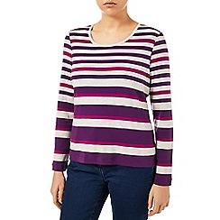 Dash - Purple Multi Stripe Jersey