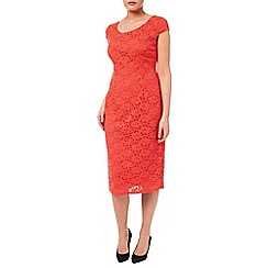 Windsmoor - Clementine Lace Dress