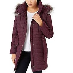 Dash - Wadded Coat