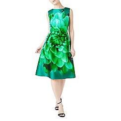 Precis - Dark green peggy placement flared dress
